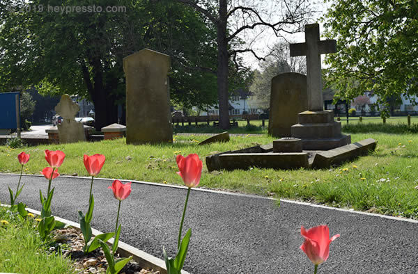 Aldenham churchyard with red tulips along the path