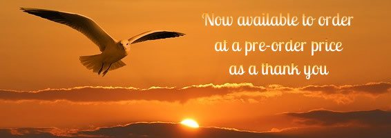 Gull flying out of sunrise. Text Now available for order at pre-order price as a thank you