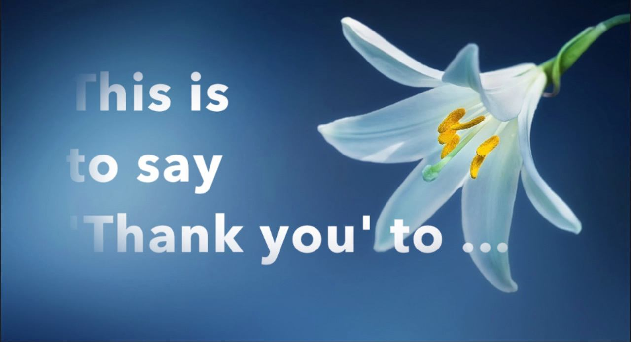 White lily on mid blue background with text: This is to say 'Thank you' to... link to video