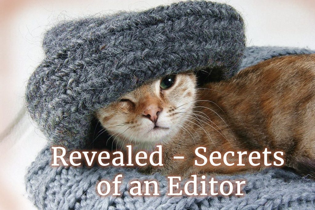 ginger cat under big grey woolen hat over one eye, sitting on chunky grey wool blanket. Text: Revealed - secrets of an editor