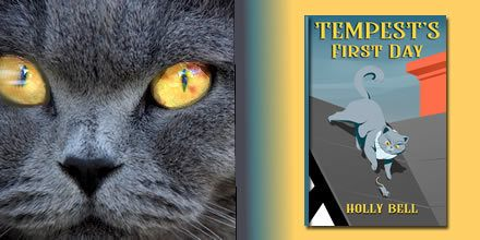 Cat close up and cover of free cozy paranormal mystery story Tempest's First Day