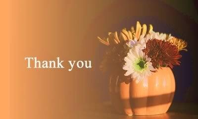 Flowers in a pumpkin mug and text: thank you