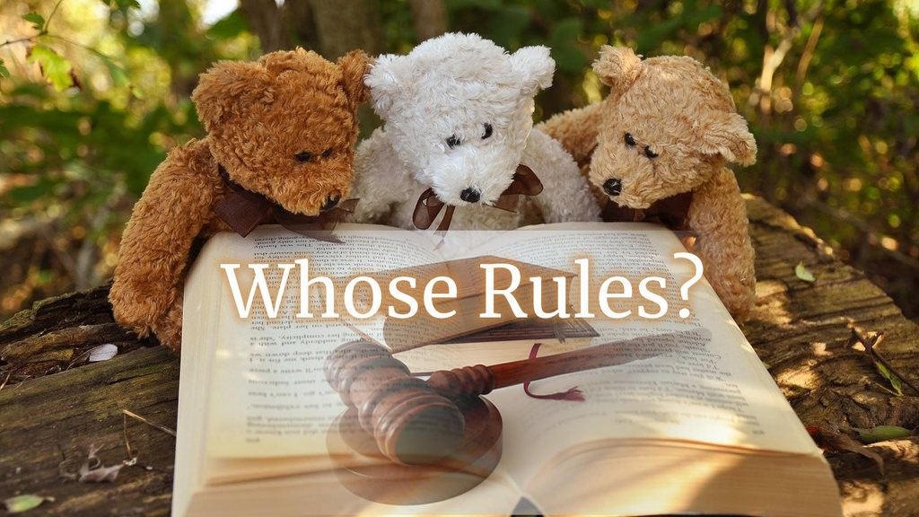 Whose Rules? Three teddy bears looking at a book with gavel in the foreground