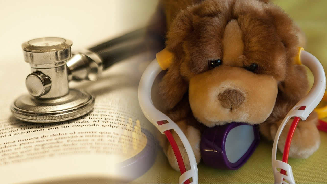 Medical atters in cozy mysteryCuddly toy dog wearing toy stethoscope beside book with real stethoscope on it